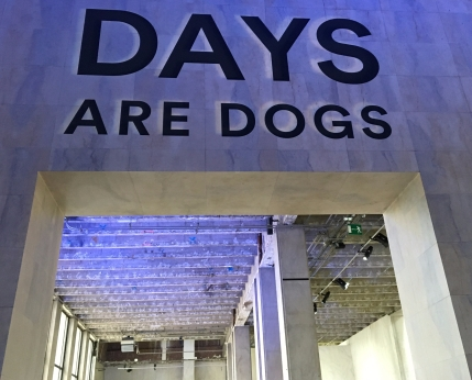 CH Days are dogs