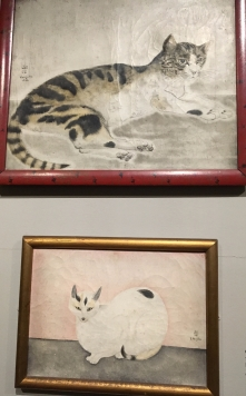 Foujit cats