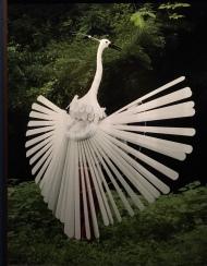 conflu ph Bird