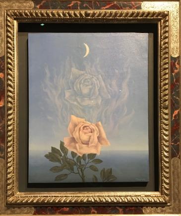 Bx A D M rose