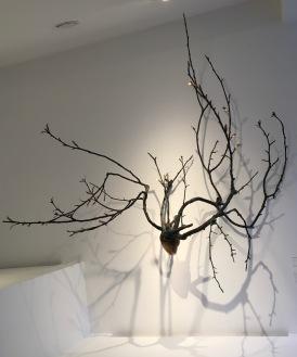 M Zaki branches